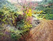 2013_2014_T_KK_Camp tenyit de color (Mura)100X80